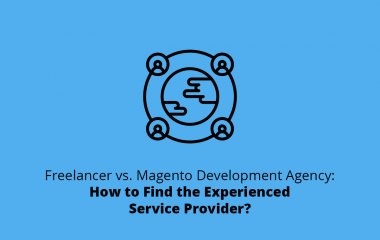 Freelancer vs. Magento Development Agency: How to Find the Experienced Service Provider?
