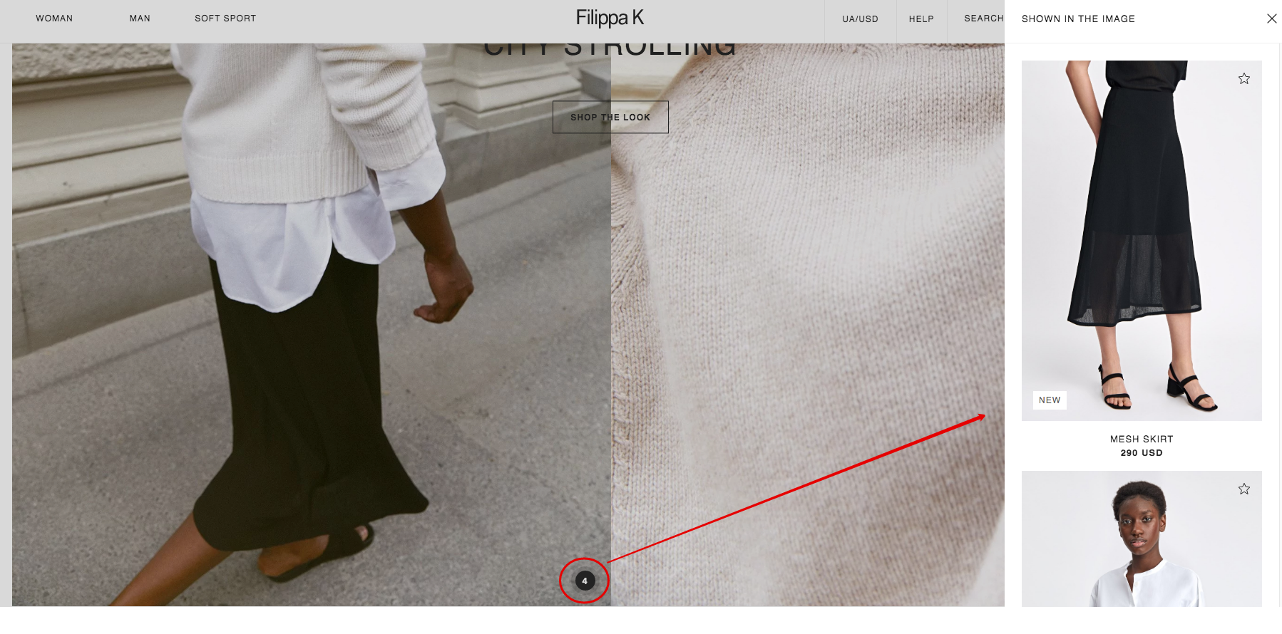 Shown in the Image Feature
