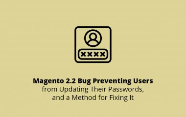 Magento 2.2 Bug Preventing Users from Updating Their Passwords, and a Method for Fixing It