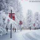 Saint Mary's University of Minnesotalogo