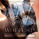 Wofford Collegelogo