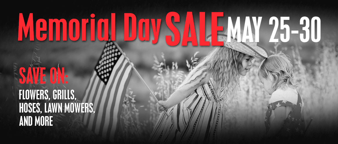 Memorial Day Sale May 25 to 29