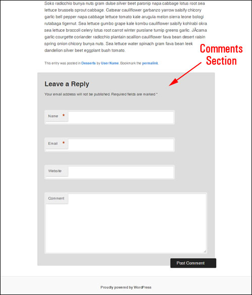 WordPress Post Commenting Fields