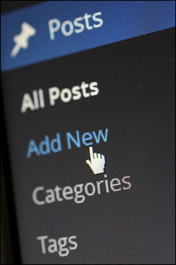 Posts & Pages - What Are The Most Important Differences? WP Pages & Posts?