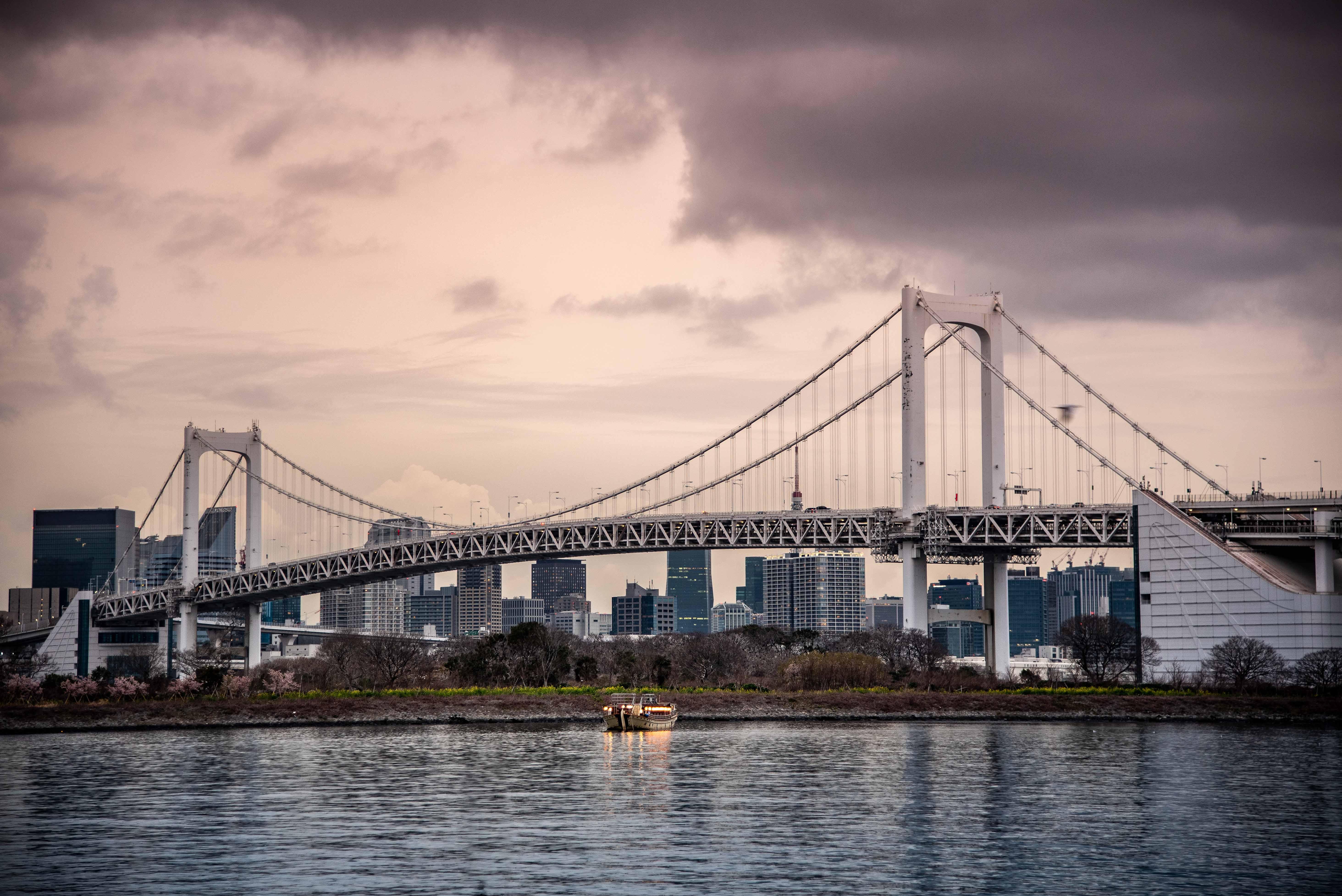 Tokyo City at Dusk