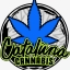 Cataluna cannabis clothing brand