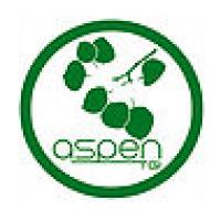 Aspen Technology Group