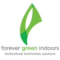 Forever Green Indoors