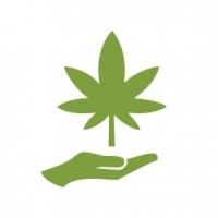 Cannabis Bar Catering