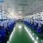 Shenzhen Kingtons Technology Co.,Ltd