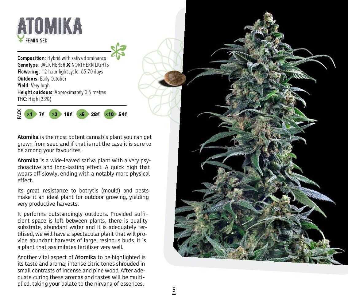 Atomik-Seeds-Catalog-autoflowering-and-feminised-cannabis-seedbank-005