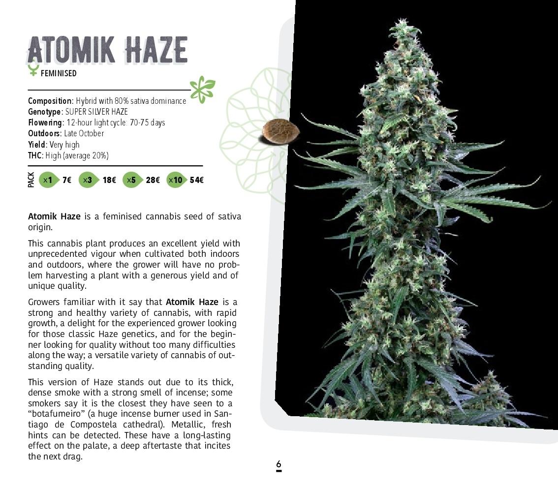 Atomik-Seeds-Catalog-autoflowering-and-feminised-cannabis-seedbank-006