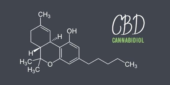 cannabidiol-cbd