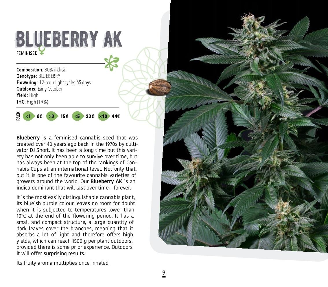 Atomik-Seeds-Catalog-autoflowering-and-feminised-cannabis-seedbank-009