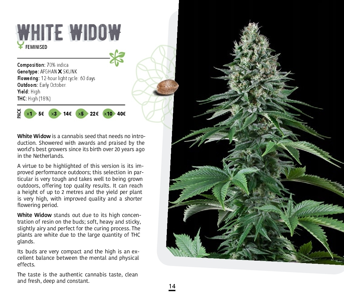 Atomik-Seeds-Catalog-autoflowering-and-feminised-cannabis-seedbank-014