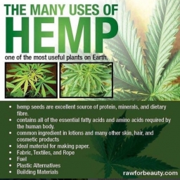 Many Uses of Hemp 2017-11-24