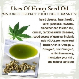 Hemp Health and Nutrition 2017-11-24