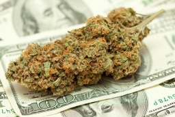 weed-dollar-bill-thinkstock_1_.jpg