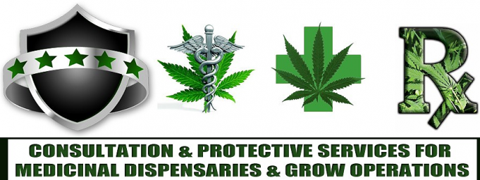 Cannabis-Security-Experts.png