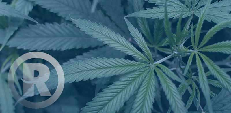 cannabis-trademarks