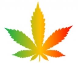 leaf1 jpeg.jpg
