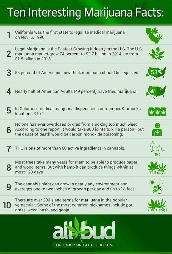 ten-interesting-marijuana-facts-allbud-com.jpeg