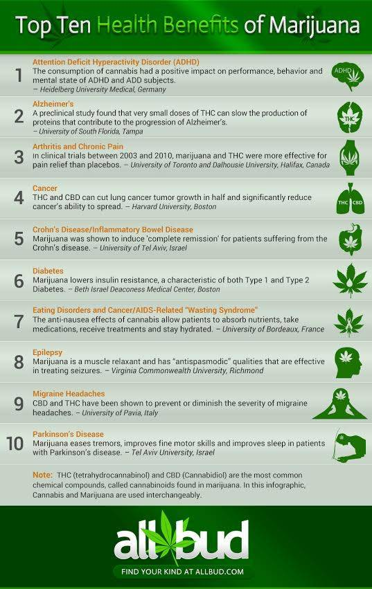 top-ten-health-benefits-of-marijuana-allbud.jpeg