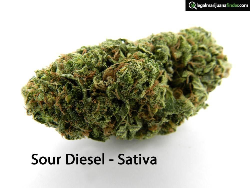 Sour Diesel - Sativa.jpg