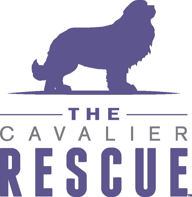 Cavalier Rescue