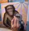 Work in progress by Artist Chris Leib