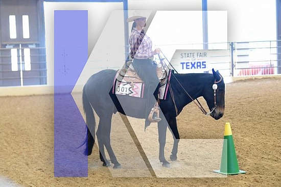 2019 State Fair of Texas- Miniature Donkey, Mule & Donkey Shows