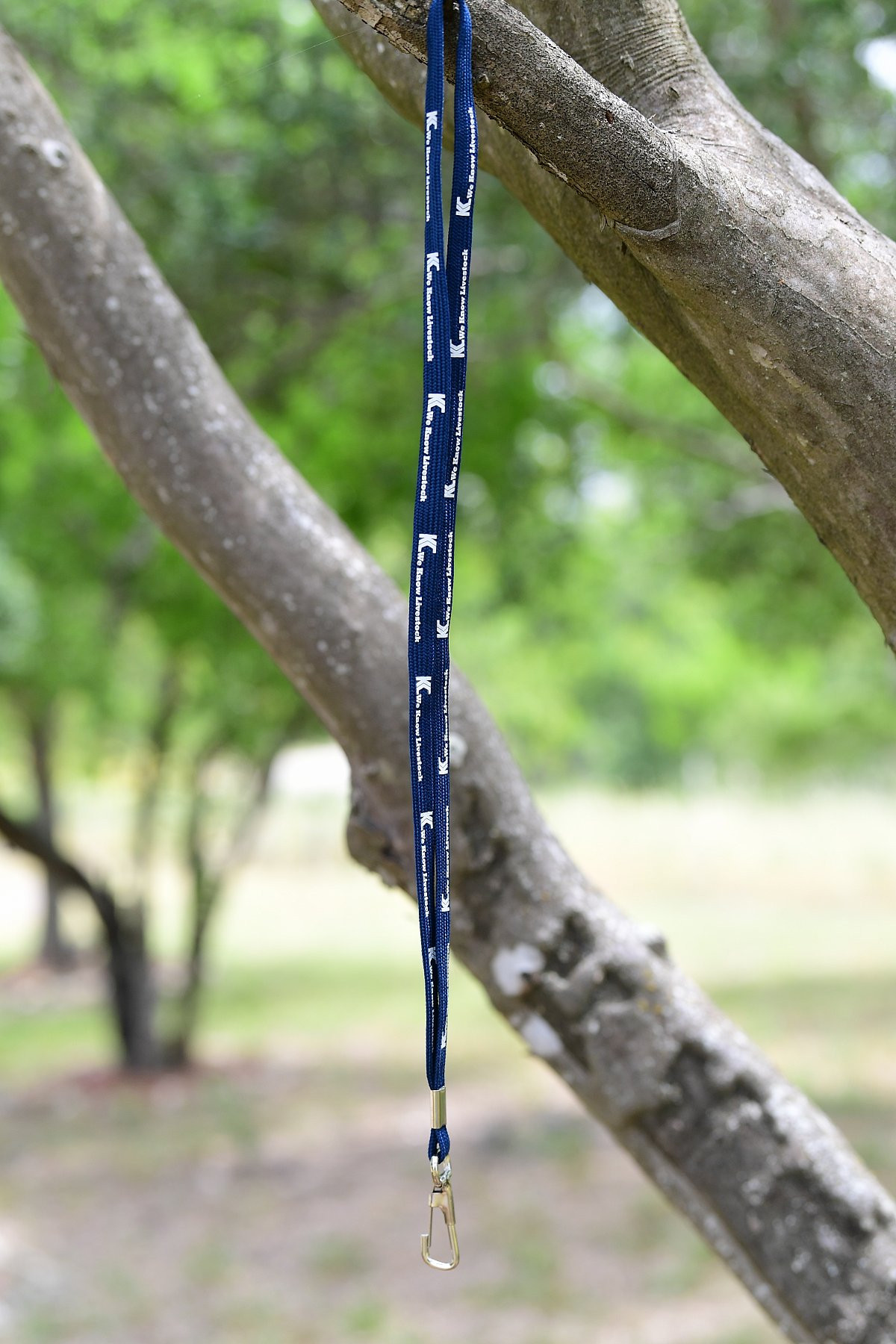Lanyards Royal Blue, Grey Or Navy | KC5_3676.JPG