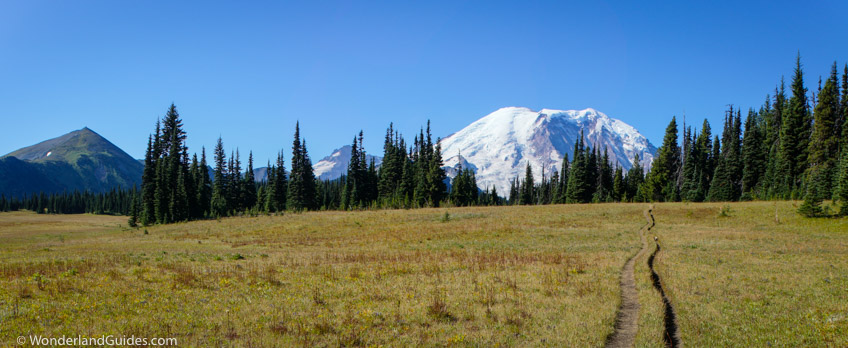 Grand Park near the Northern Loop Trail at Mount Rainier National Park