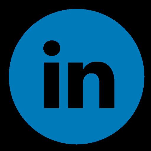 LinkedIn Lions