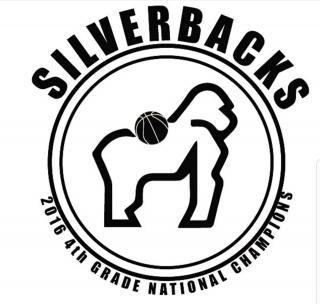 Silverbacks 13U