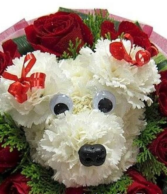 Puppy-Bouquet-with-Roses-69
