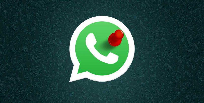Nueva funcion whatsapp