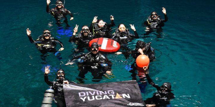 Conoce el mundo submarino de los Cenotes.