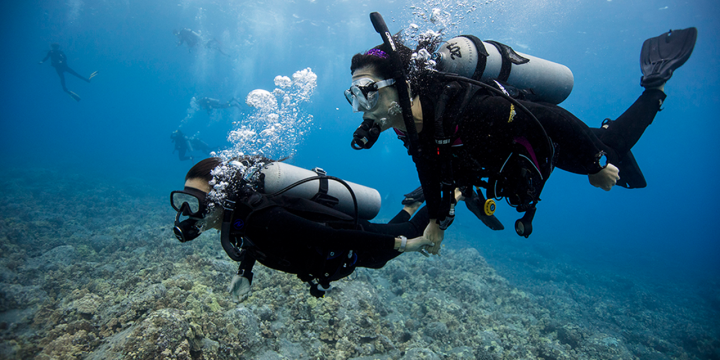 Tips que debes de saber antes de bucear en un arrecife de coral