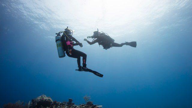 Razones para tener la certificación Open Water Diver