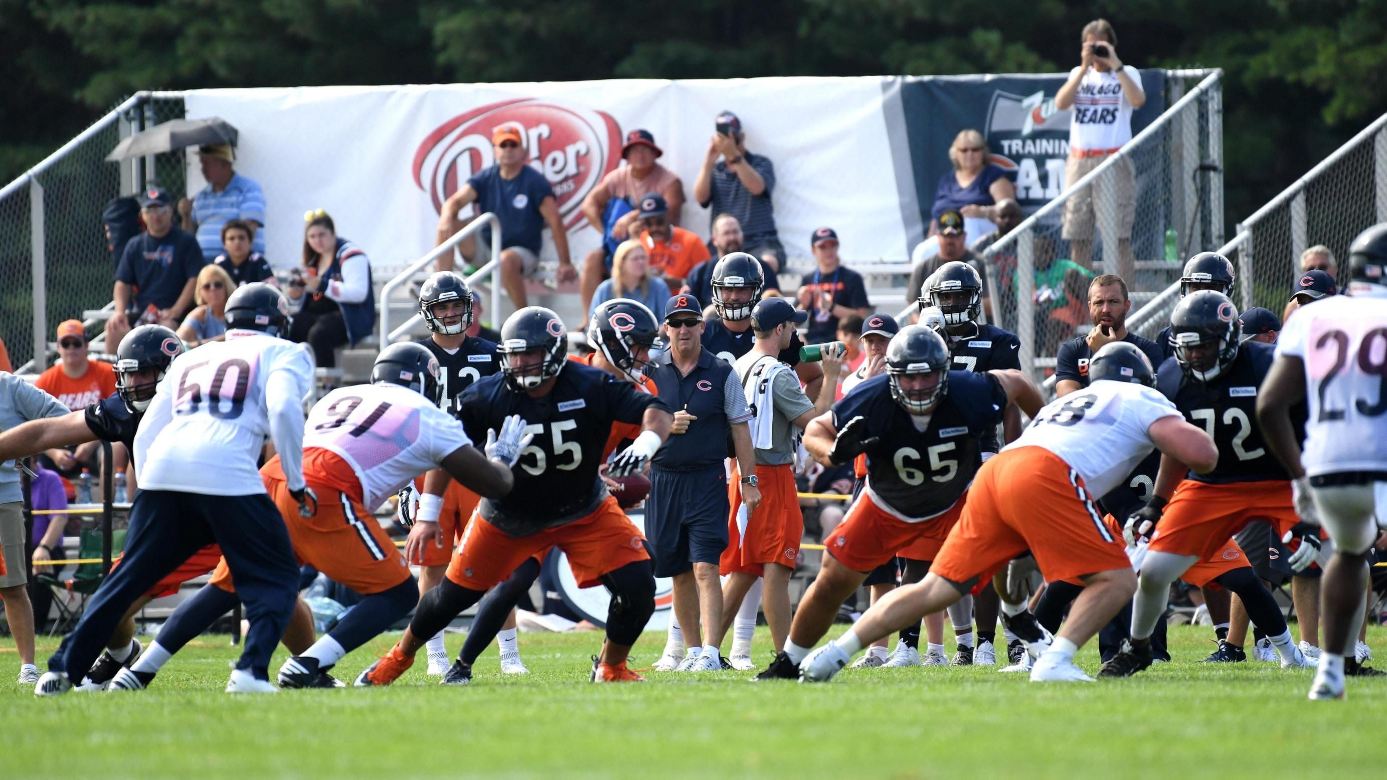Cheap NFL Jerseys NFL - Bears linebacker Jerrell Freeman is living the football dream ...