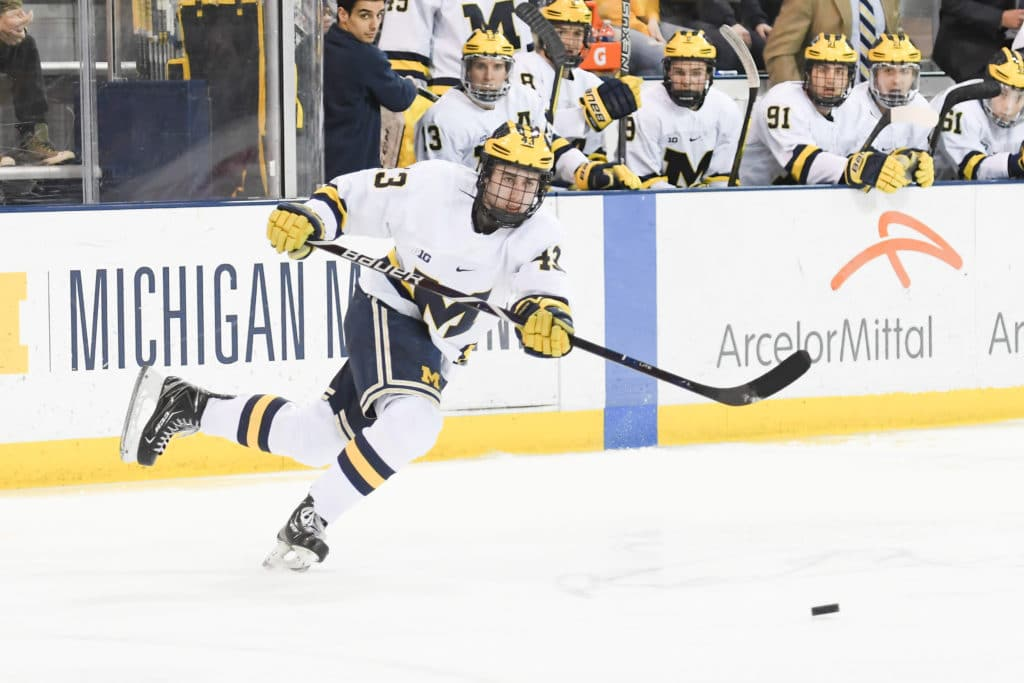 BIG10: 2018 Prospect Quinn Hughes Has Taken An Elite Path To The Draft