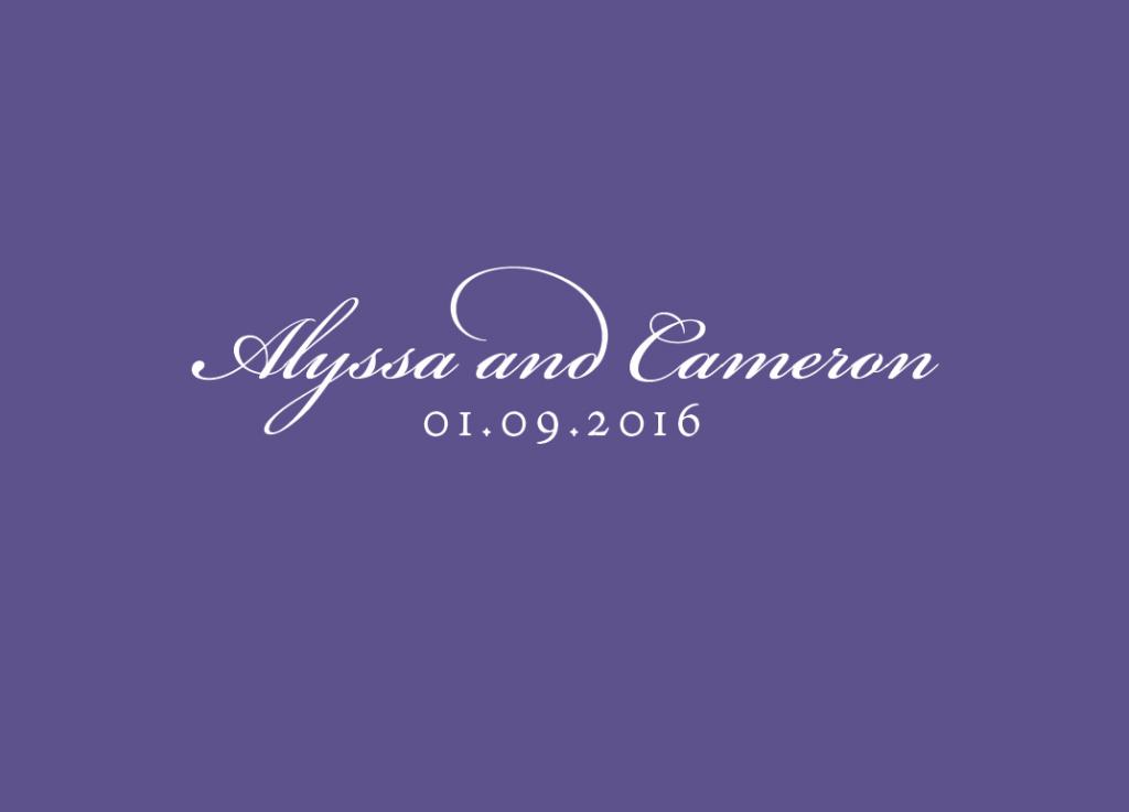alyssa_insert_backweb
