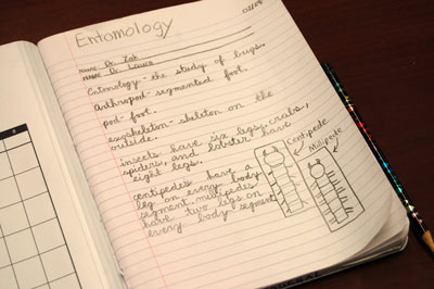Entomology notes