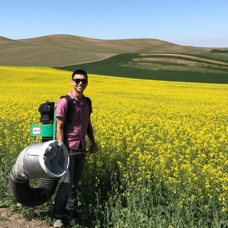 Benjamin Lee sampling for insects on the Palouse with a D-VAC.