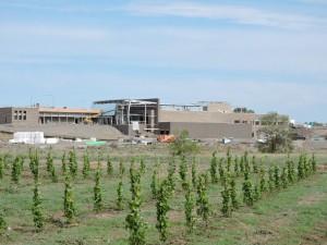 Wine Center under construction