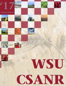 WSU CSANR '17 Annual Report cover image including enlarged wheat background