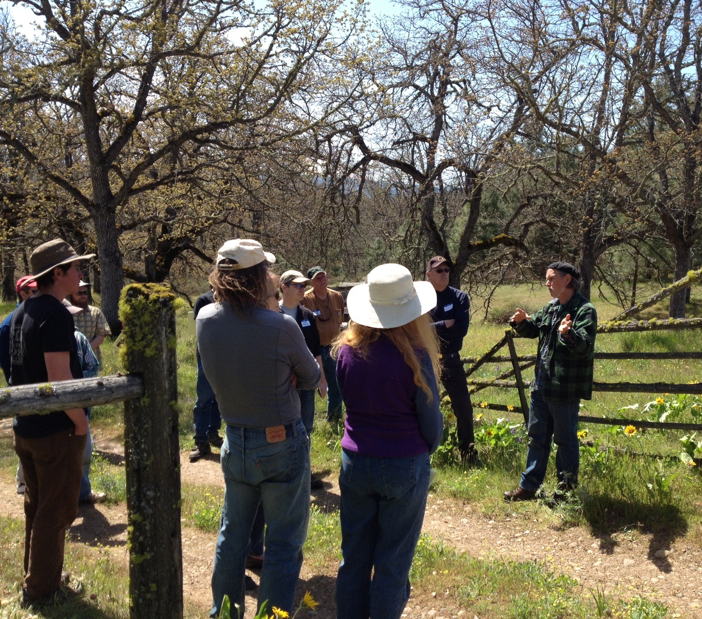 Robin explains the importance of threatened oak woodlands in an ecosystem.