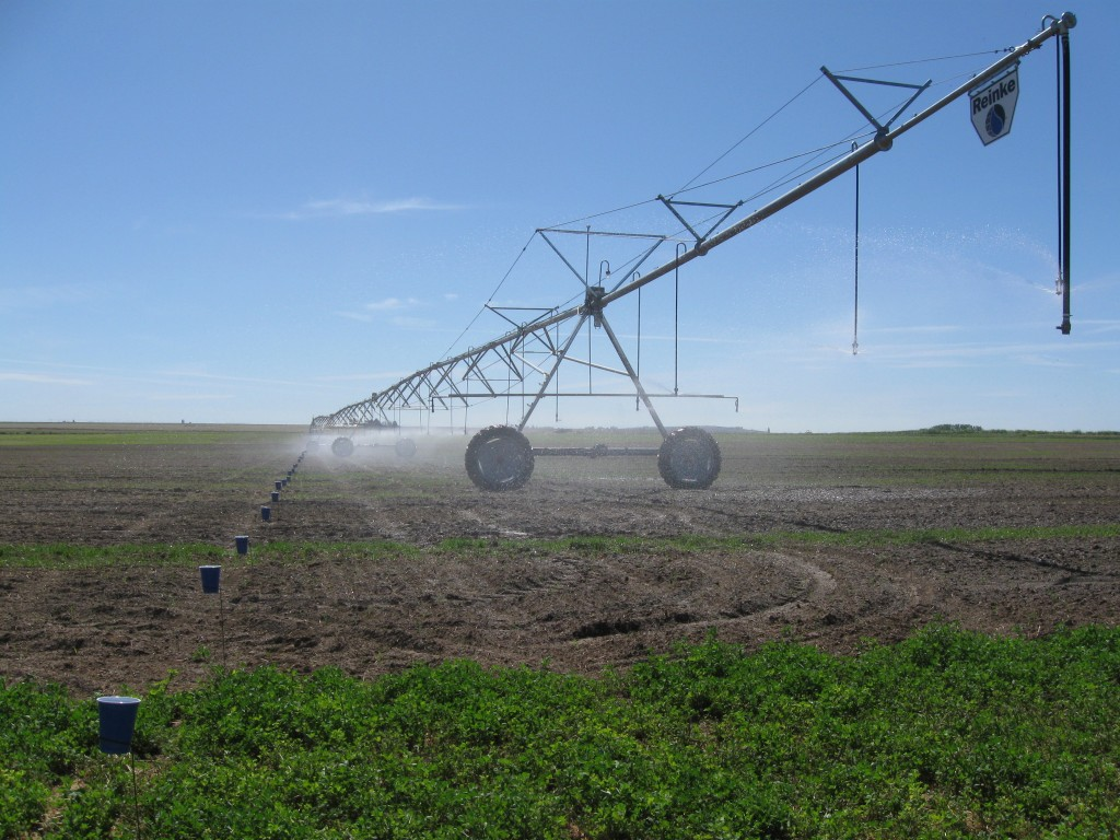 Water uniformity test being conducted on a center pivot sprinkler system in the Columbia Basin.