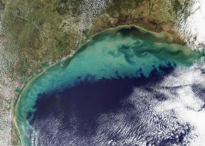 Gulf of Mexico dead zone (Photo: reposted from PBS Newshour)